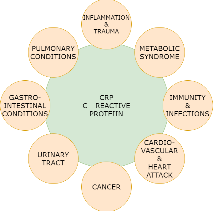 C-REACTIVE PROTEIN.  WHY IS IT TESTED? IT IS A REFLECTION OF SYSTEMIC INFLAMMATION