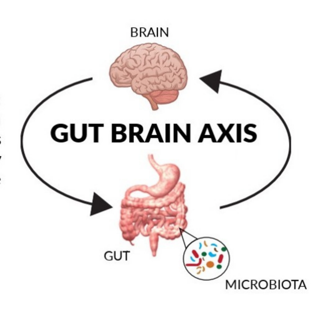 The gut–brain axis is the biochemical signaling that takes place between the gastrointestinal tract and the central nervous system. The gut-brain axis (GBA) consists of bidirectional communication between the central and the enteric nervous system, linking emotional and cognitive centers of the brain with peripheral intestinal functions. Recent advances in research have described the importance of gut microbiota in influencing these interactions. A healthy gut microbiota not only has beneficial effects on the activity of the immune system, but also on thyroid function. Thyroid and intestinal diseases prevalently coexist—Hashimoto's thyroiditis (HT) and Graves' disease (GD) are the most common autoimmune thyroid diseases (AITD) and often co-occur with Celiac Disease (CD) and Non-celiac wheat sensitivity (NCWS). (2)